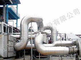 催化氧化系统(CO)